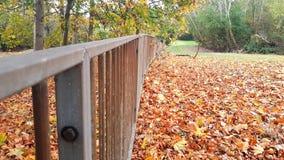 Meu parque local de Gloucester Imagem de Stock Royalty Free