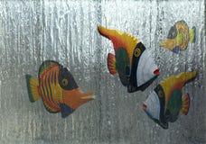 Meu próprio aquário Imagens de Stock
