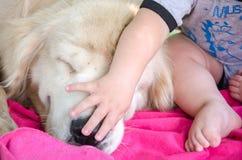 Meu primeiro amigo meu cão Foto de Stock Royalty Free