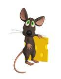 Meu queijo Fotos de Stock Royalty Free
