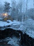 Meu quintal é um país das maravilhas bonito do inverno fotografia de stock