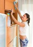 Meubles de nettoyage de femme au foyer avec le pulvérisateur image libre de droits