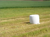 Meule de foin dans le domaine Moisson L'agriculture au Belarus, foin est emballée dans un matériel blanc Photos libres de droits