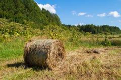 Meule de foin dans le domaine Panorama de rural Photographie stock