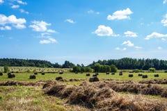 Meule de foin dans le domaine rural Image stock