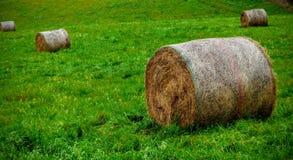 Meule de foin dans le paysage agricole Photo stock