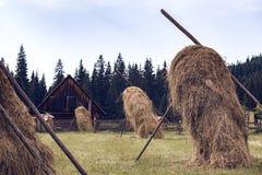 Meule de foin dans le village carpathien ukrainien photo libre de droits