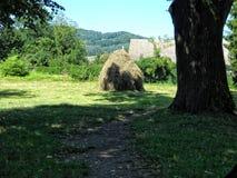 meule de foin près de verger champ agricole dans le secteur de montagne photographie stock libre de droits