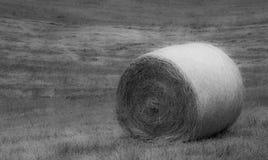 Meule de foin sur l'herbe Photos libres de droits