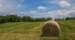 Meule de foin sur l'herbe verte Photographie stock libre de droits
