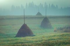 Meules de foin de campagne en brouillard de brume au matin images libres de droits