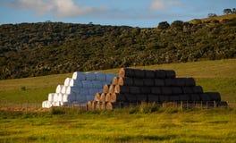 Meules de foin d'alimentation de bétail Photo stock