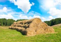 Meules de foin de blé Photo libre de droits