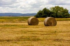 Meules de foin m?res jaunes du bl?, champ dans l'Australie du sud Horizontal rural photo stock