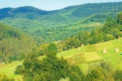 Meules de foin sur le champ rural en montagnes photographie stock