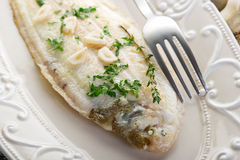 Meuniere sole fish. With parsley and  garlic on dish Royalty Free Stock Photo