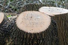 Meurtre d'arbre écrit sur l'arbre abattu image stock