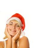 Mevr. Santa stock foto