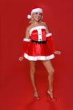 Mevr. Santa stock fotografie
