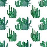 Mexicaans cactus naadloos patroon op witte achtergrond Vectorillu Royalty-vrije Stock Foto