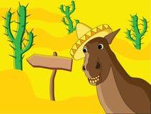 Mexicaans Paard Royalty-vrije Stock Foto