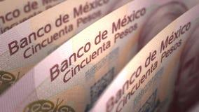 Mexicaans Peso'sclose-up royalty-vrije illustratie