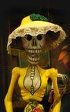 Mexicaans skelet Royalty-vrije Stock Foto's