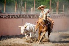 Mexicaanse charrosruiter het worstelen stier, TX, de V.S. Royalty-vrije Stock Afbeelding