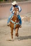 Mexicaanse cowboy met stier hes die aan groun wordt geworsteld Stock Fotografie