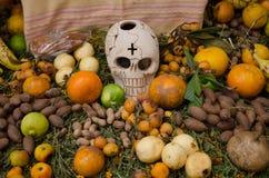 Mexicaanse dag van het dode aanbiedende altaar Royalty-vrije Stock Fotografie