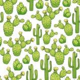 Mexicaanse Eetbare Cactus of Cactussen voor Cinco De Mayo