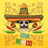 Mexicaanse Elementen Royalty-vrije Stock Foto's