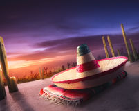 Mexicaanse hoed stock afbeelding