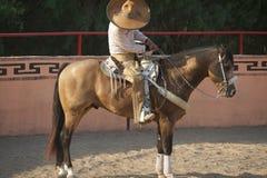 Mexicaanse horeseman van Charros stock foto