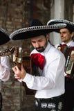 Mexicaanse musicimariachi in de studio royalty-vrije stock afbeelding