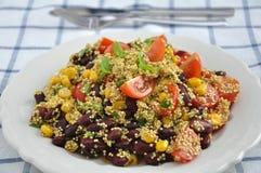 Mexicaanse Quinoa Salade Stock Afbeelding