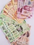 Mexicaanse rekeningen van verschillende benamingen, van de voorzijde Royalty-vrije Stock Afbeeldingen