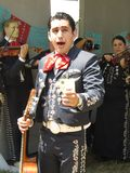Mexicaanse Solist Mariachi Stock Foto