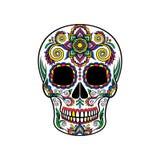 Mexicaanse suikerschedel met bloemenornament, Dag van de doods vectorillustratie royalty-vrije illustratie