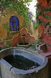 Mexicaanse tuin Royalty-vrije Stock Fotografie