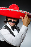 Mexicain drôle avec le sombrero Image stock
