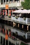 Mexicali Rosa em Perth imagens de stock royalty free