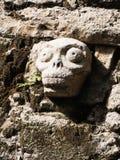 Mayan Skull Stone Sculpture Royalty Free Stock Photos