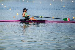 Free Mexican Athlete On A World Rowing Cup Competition Rowing Royalty Free Stock Photos - 117965638