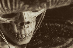 Mexican Bandit Skeleton. A skeleton wearing a Mexican sombrero and a poncho. Edited in a vintage film style stock photo