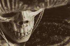Mexican Bandit Skeleton Stock Photo