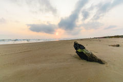 Free Mexican Beach Royalty Free Stock Images - 85800709