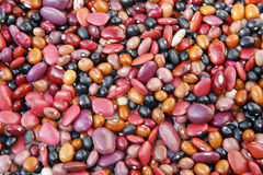 Mexican Beans royalty free stock image