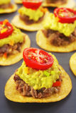 Mexican Bites Nachos Appetiser Finger Food Royalty Free Stock Image