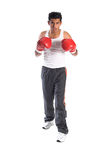 Mexican Boxer Royalty Free Stock Images